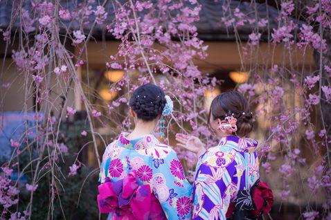 京都櫻花親子寫真 2018-03-28-15-38-10-VA4_7029.JP