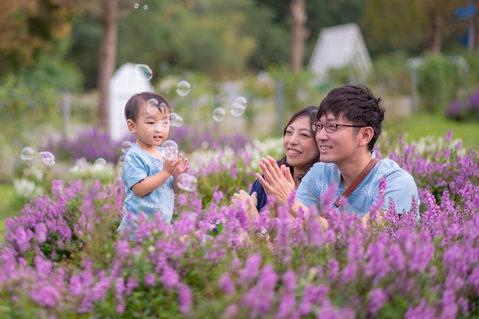 富田花海農場 動物落羽松 2019-10-20-15-17-44-VA4_277