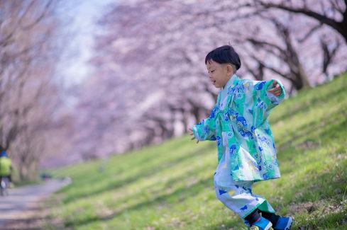 京都櫻花親子寫真 2018-03-27-12-23-21-VA4_5376.JP