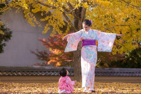 奈良公園楓葉銀杏秋季 2018-11-20-13-05-48-DSC_2029.