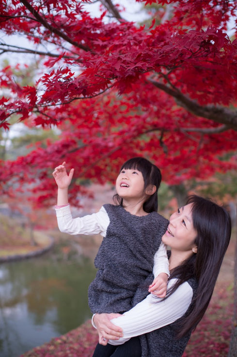 奈良公園 秋季楓葉銀杏 2017-11-30-12-17-51-VA4_6805