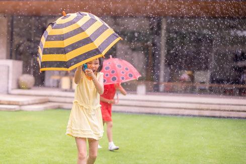 雨中攝影 2019-06-19-14-49-23-VA4_2668.JPG