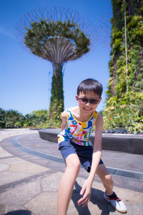 新加坡濱海灣花園Gardens by the Bay109.JPG