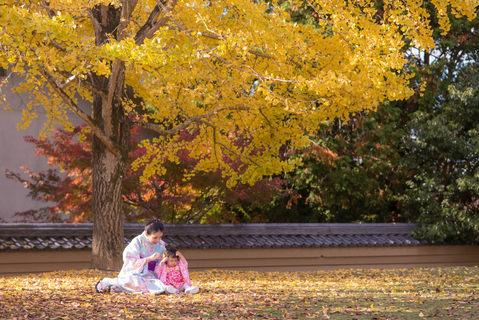 奈良公園楓葉銀杏秋季 2018-11-20-12-44-53-DSC_1966.