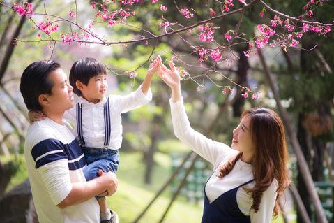 台北中正紀念堂櫻花 2017-03-30-10-16-52-DSC_6908-2