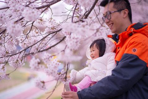 韓國首爾櫻花 2019-04-09-15-17-53-VA4_0830.JPG