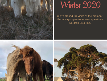Farm Closing for Winter