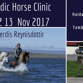 Icelandic Horse Clinic 11 12 13 November 2017