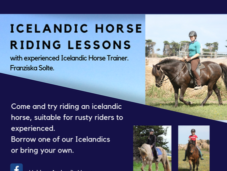 Icelandic Horse Riding Lessons             23rd 24th Feb 2019