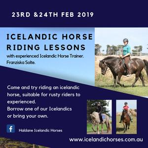 Icelandic horse riding lessons 23rd 24th Feb 2019
