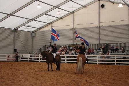 Icelandic horses rock!