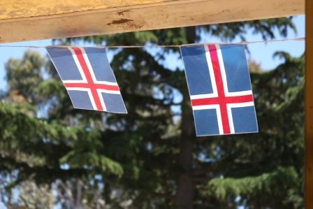 Flying the Icelandic flag