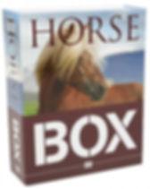 horse in a box.jpg