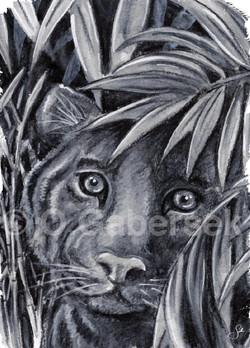 Chapitre 1 - Dans La Jungle