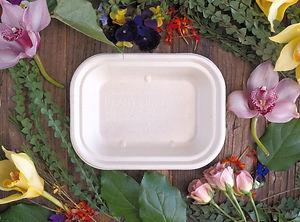 Compostable_Plate_5x4_edited.jpg
