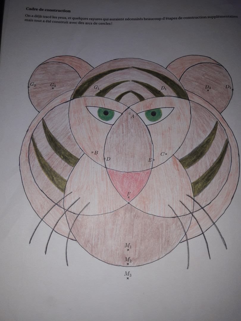 Caboux Mathias - tigre.jpg