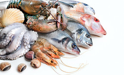 seafoodcategory