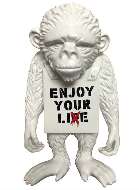 ENJOY YOUR LIFE - street monkey