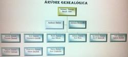 Arvore Geenalógica