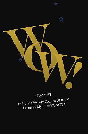 Diversity Council Sponsors