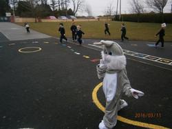 Poor Bunny is lost!