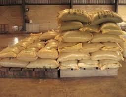 Almacenamiento de Cacao Fase 6