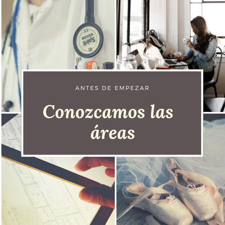 AREAS PROFESIONALES