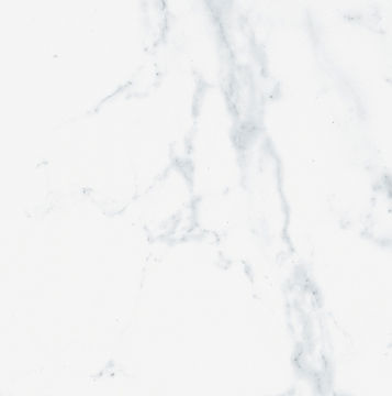 PORCELANOSA CARRARA BRILLO 24X24.jpg