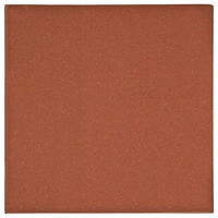 Quarry Tile Spanish Red Clay tile natural clay Alfagres Columbia Keystone Products Barbados