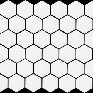 Hexagon (White Matte).jpg