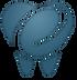 לוגו ליאור רק השן.png