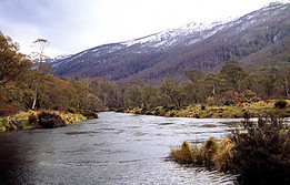 Thredbo River, Kosciusko  NP