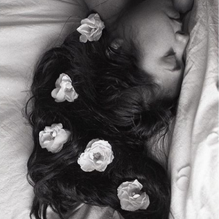 White roses and sheets
