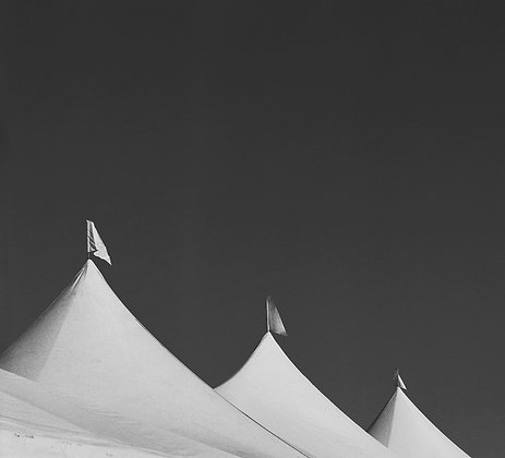 Black to white photo of white tent tops with flags