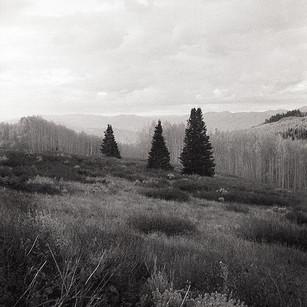 Three Pines