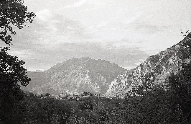 Timpanogos View