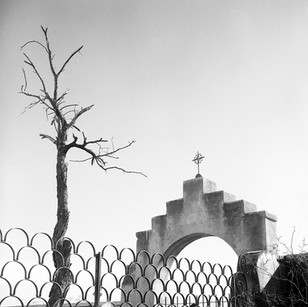 Tree and archway at San Xavier Mission del Bac