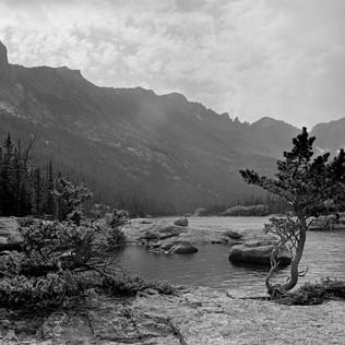 Mills Lake - Pine