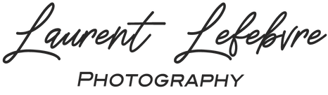 Logo Laurent Lefebvre noir.png