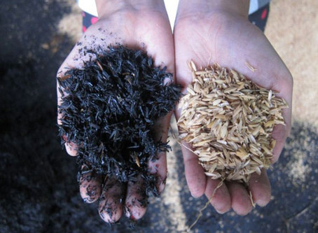 Rice husks can be recycled into valuable input materials