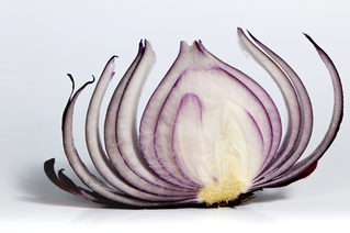 Peeling the Onion - How to Survive An IT Audit
