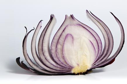 Peeling-the-Onion-Survive-an-IT-Audit.png