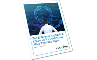 The Enterprise Application Lifecycle: It's Costing You More Than You Know