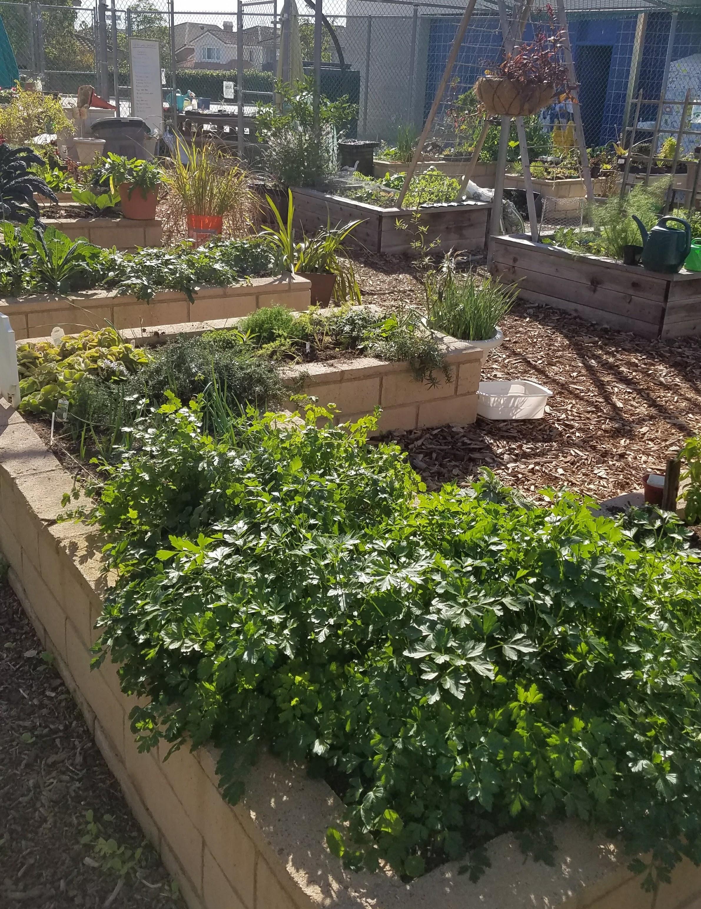 Malcom Garden Visit