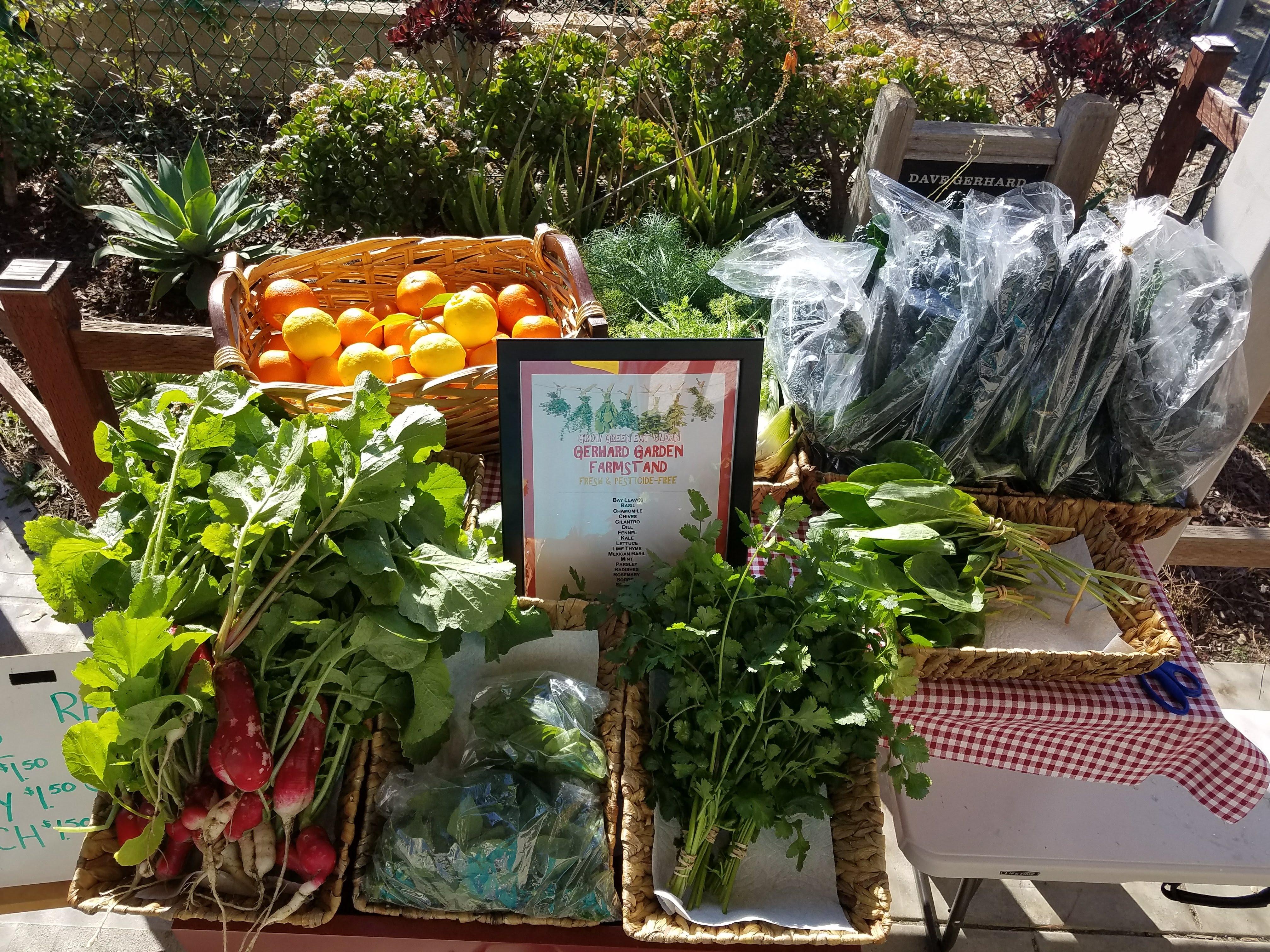Pesticide Free Farm Stand