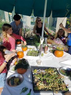 Fall Fundraiser - Pumpkin Succulents