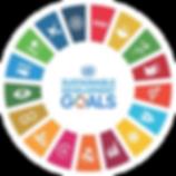 SDGlogo.png
