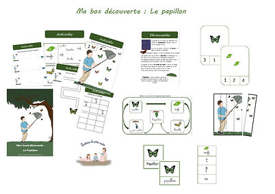 visuel site box papillon-page-001.jpg