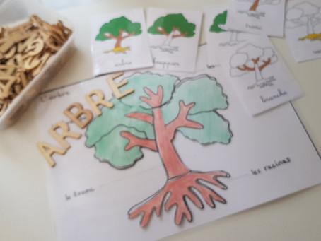 Botanique: L'arbre ! Une alternative au puzzle Montessori.