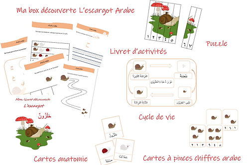 Ma box découverte arabe '' L'escargot''